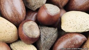 _71921824_mixed_nuts-spl-1
