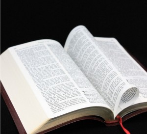 bible-sxchu-443787-nafrea1